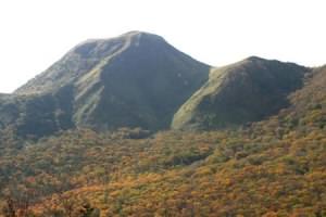 三瓶山自然林