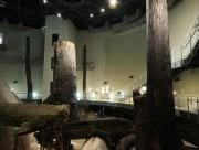 出張授業「三瓶小豆原埋没林に学ぶ大田市の自然」