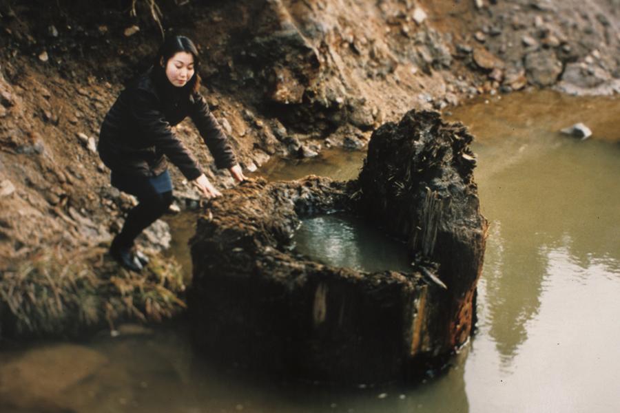三瓶小豆原埋没林。1998年の発掘調査で発見。