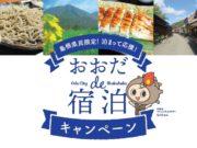 【島根県内在住者限定】ケビン・バンガローの宿泊料金が割引きになります。