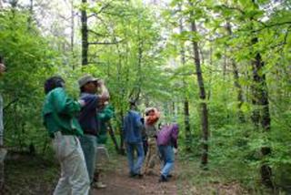 北の原の植物・鳥類調査